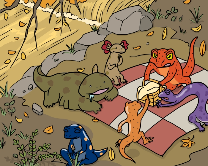 One of five illustrations for Save Our Salamanders school project. Each illustration demonstrates the salamanders doing a particular activity.